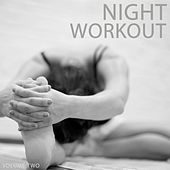 Night Workout, Vol. 2 (Best Of Pushing & Motivating Electronic Dance Music) by Various Artists