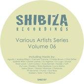 Various Artists Series 06 de Various Artists