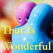 That Is Wonderful de Various Artists