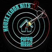House Floor Hits 3 de Various Artists