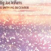 A Snowing December de Big Joe Williams