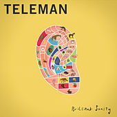 Brilliant Sanity de Teleman