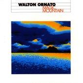 Magic Mountain von Walton Ornato
