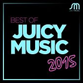 Best of Juicy Music 2015 by Various Artists