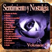 Sentimientos y Nostalgia, Vol. 5 by Various Artists