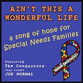 Ain't This a Wonderful Life (feat. Joe Normal) by The Conductors