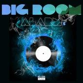 Big Room Alarm, Vol. 5 de Various Artists