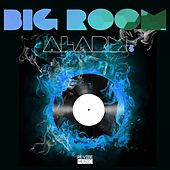 Big Room Alarm, Vol. 5 by Various Artists