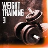 Weight Training 3 von Various Artists