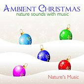Ambient Christmas Nature Sounds with Music by Nature's Music