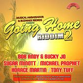 Going Home Riddim, Vol. 2 (Presented by Musical Ambassador & Buzwakk Records) by Various Artists