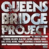 Queensbridge Project by Various Artists
