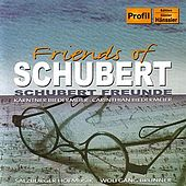 Friends of Schubert by Salzburger Hofmusik