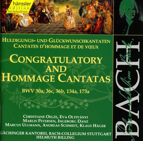 J.S. Bach - Congratulatory And Hommage Cantatas BWV 30a, 36c, 36b, 134a, 173a by Bach-Collegium Stuttgart