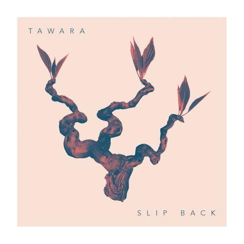 Slip Back von Tawara