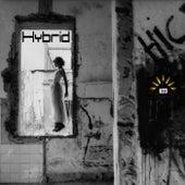 Hybrid de Various Artists