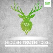 Hidden Truth #003 by Various Artists
