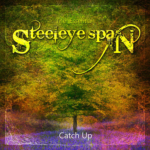 The Essential Steeleye Span: Catch Up by Steeleye Span