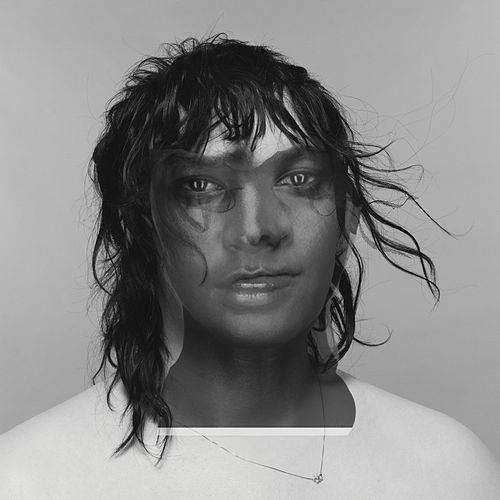 4 Degrees by Anohni