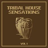 Tribal House Sensations, Vol. 1 by Various Artists