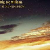The Old Wild Shadow de Big Joe Williams