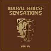 Tribal House Sensations, Vol. 4 by Various Artists