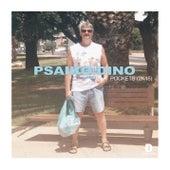 Pockets 2k15 von Psaiko.Dino