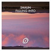 Falling Into van Shaun