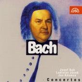 Bach: Violin Concertos / Josef Suk by Josef Suk