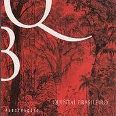 Abstrações de Quintal Brasileiro