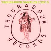 Troubadour Records Promo and Demo Sampler 1/2015 de Various Artists