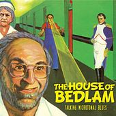 Talking Microtonal Blues by The House of Bedlam