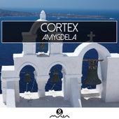 Amygdela - EP by Cortex