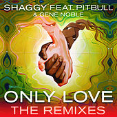 Only Love (The Remixes) de Shaggy