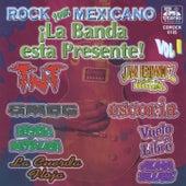 ¡La Banda Está Presente!, Vol.1 (Rock 100% Mexicano) by Various Artists