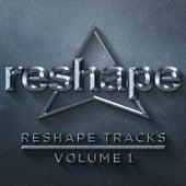 Reshape Tracks Vol 1 de Various Artists