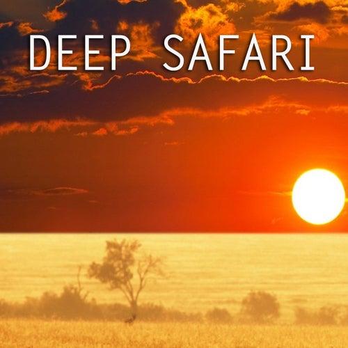 Deep Safari by Billy Paul