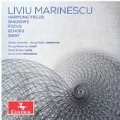 Marinescu: Chamber Works von Various Artists