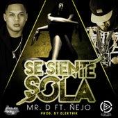 Se Siente Sola (feat. Nejo) de Mister D