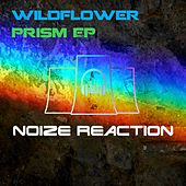Prism - Single by Wildflower