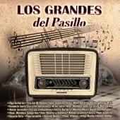 Los Grandes del Pasillo by Various Artists