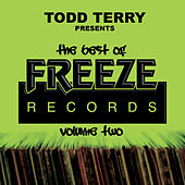The Best of Freeze Records, Vol. 2 de Todd Terry