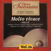 Clásicos Inolvidables Vol. 36, Molto Vivace by Various Artists