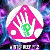Winter Deep, Pt. 2 by Various Artists