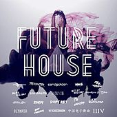 Future House Music 2015 by Various Artists