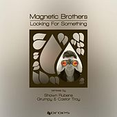Looking For Something '2012 Remixes' by Magnetic Brothers