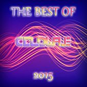 The Best Of Coldwave Records 2015 von Various Artists