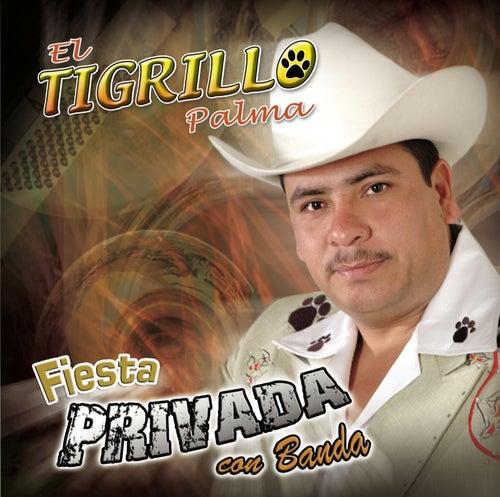 Fiesta Privada Con Banda by El Tigrillo Palma