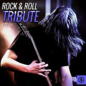 Rock & Roll Tribute, Vol. 3 by Various Artists