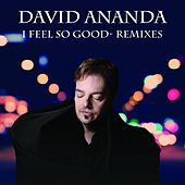 I Feel So Good: Remixes by David Ananda